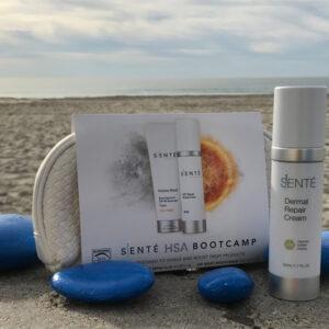 Sente Dermal Repair Cream Limited Edition Gift